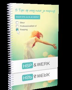 hsp-en-werk